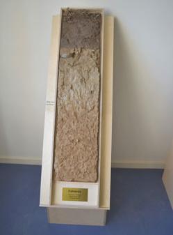 umweltconsulting dr hoffmann lackprofile brandenburger b den. Black Bedroom Furniture Sets. Home Design Ideas